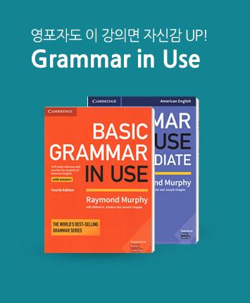 박상효 [문법] Grammar in Use
